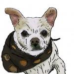 Digital painting of this fashionable Chihuahua